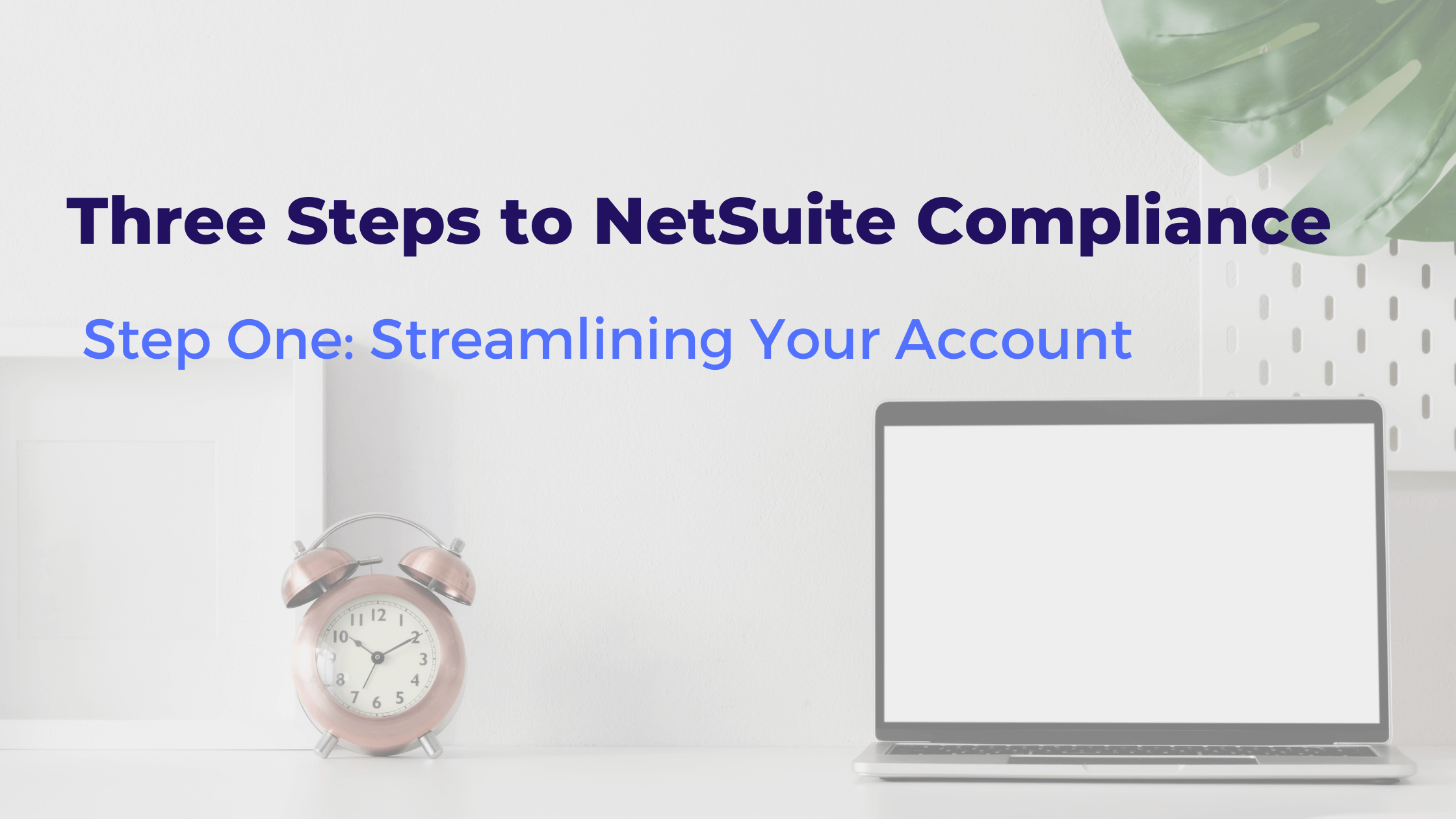 Three Steps to NetSuite Compliance