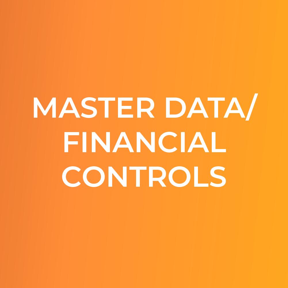 Master Data/Financial Controls