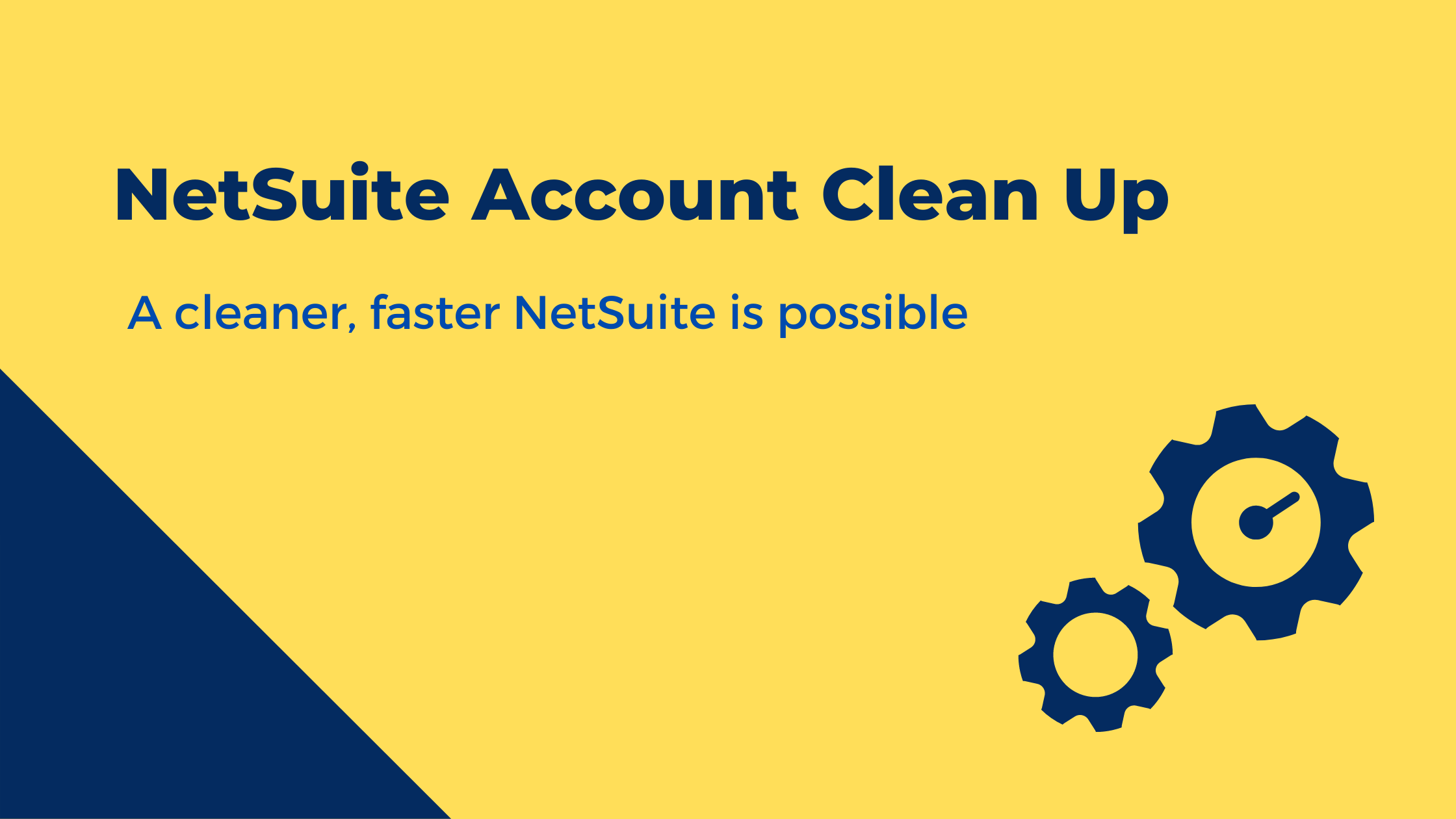 NetSuite Account Clean Up
